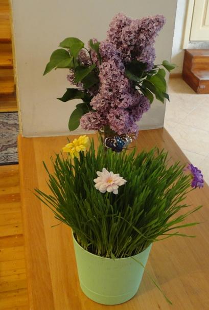 зеленая травка - хороший декор на Пасху