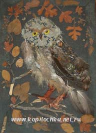 Картина из перьев Совушка