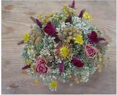 Рукоделие Поделки из сухих цветов и растений