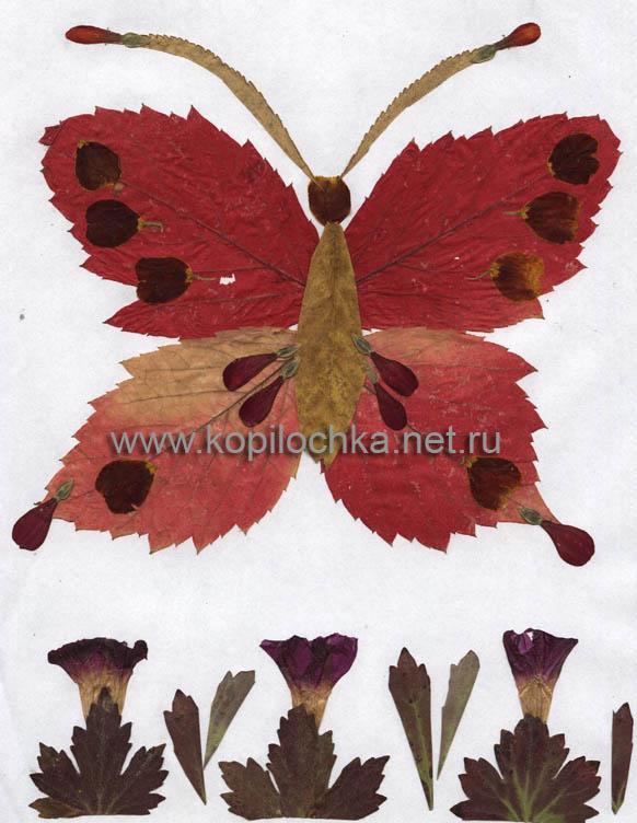 Осенние поделки из листьев своими